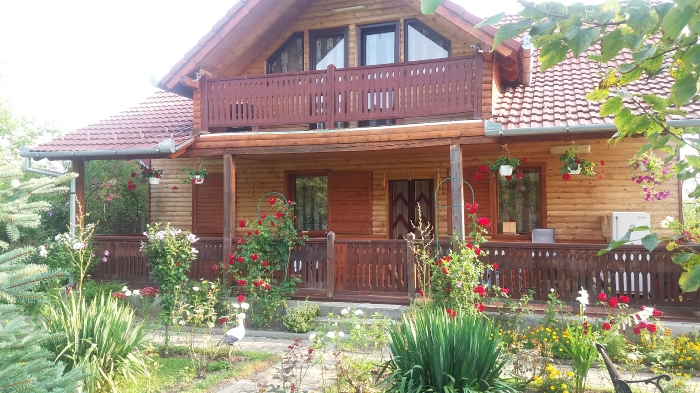 Pensiunea Karina - accommodation in  Sibiu Surroundings (03)