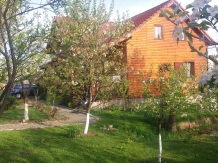 Pensiunea Karina - accommodation in  Sibiu Surroundings (05)