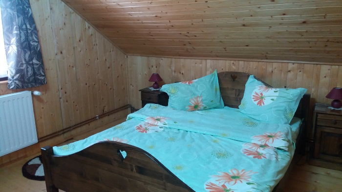 Pensiunea Karina - accommodation in  Sibiu Surroundings (10)