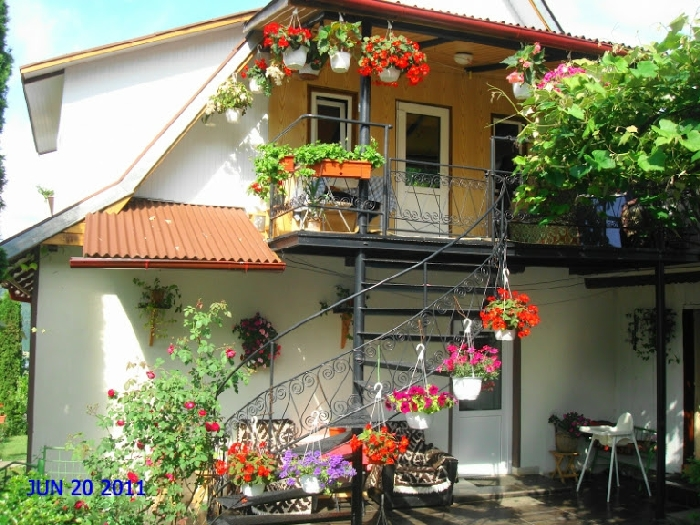 Casa Balan - accommodation in  Ceahlau Bicaz (03)