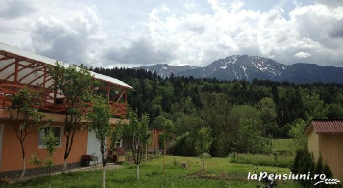 Pensiunea Alex - accommodation in  Maramures Country (05)