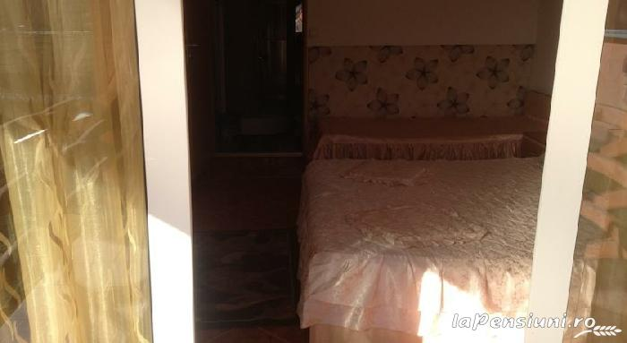 Pensiunea Alex - accommodation in  Maramures Country (14)