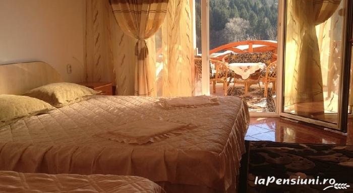 Pensiunea Alex - accommodation in  Maramures Country (16)