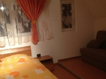 Pensiunea Alex - accommodation in  Maramures Country (17)